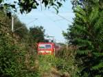 kbs-580-thuringer-eisenbahn/161867/so-langsam-wuchern-meine-alten-fotopunkte So langsam wuchern meine alten Fotopunkte zu! 143 153 am 30.09.2011 in der Nähe vom Posten 15